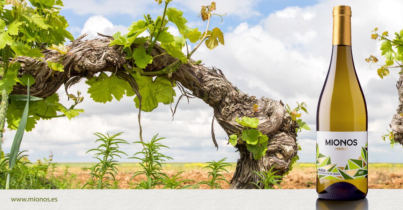 Publicidad para vino MIONOS