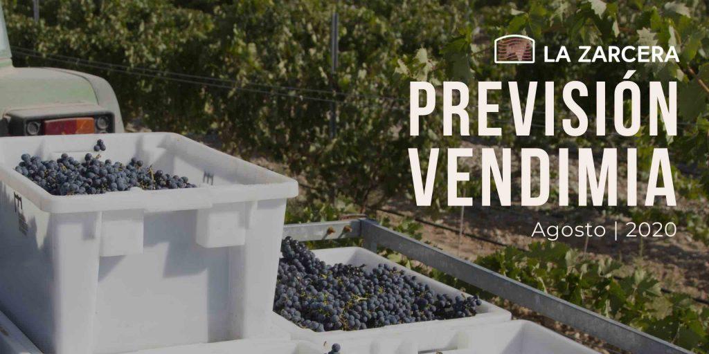 Previsión Vendimia 2020